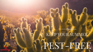 pest elimination Scottsdale